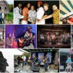 Summer Concert Series Another Success